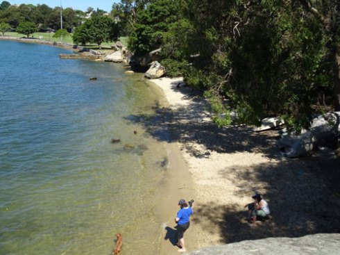 Lovely beach at Callan Park Rozelle