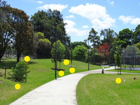 The yellow dots show what I believe are newly planted trees.  Good one Marrickville Council.