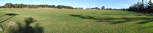This panorama does not fully capture the playing fields of Tempe Reserve. Within metres of the Cooks River & the Alexandra Canal, these fields clean stormwater before it enters the river. Importantly, this is an important resource for grass eating birds and other wildlife. To think of it covered in plastic is very concerning because of the massive impact to the environment.