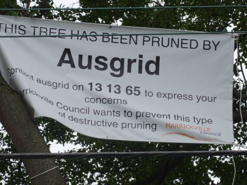 The sign by Marrickville Council. I am very pleased that Council is doing this.