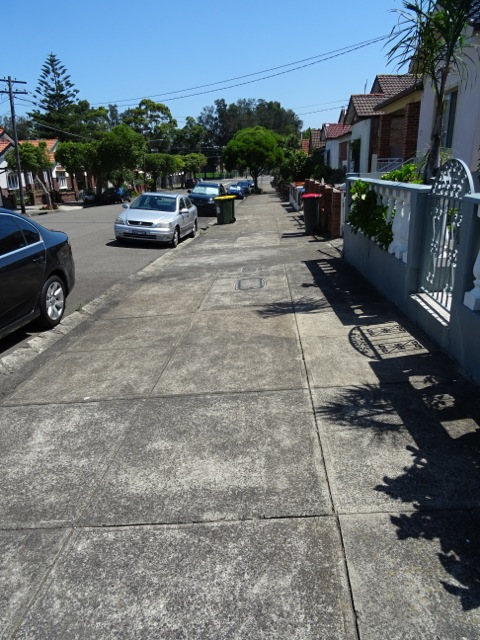 Marrickville streetscape.  There was more concrete behind me.
