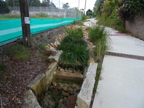 The rain garden along the laneway.