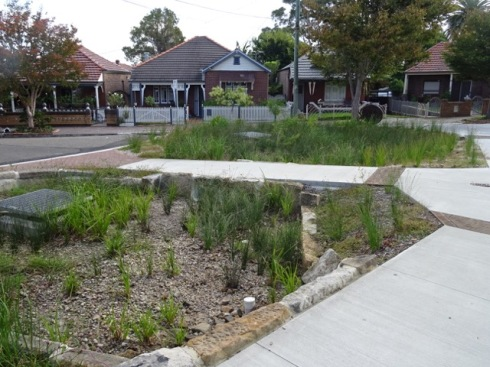 Two large rain gardens fill the space at the end of the  cul-de-sac.  A good use of a large expanse of bitumen.