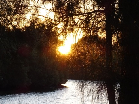 Sunset on the Cooks River....sunset on Marrickville Council despite massive community opposition.