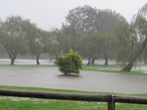 Marrickville Golf Course