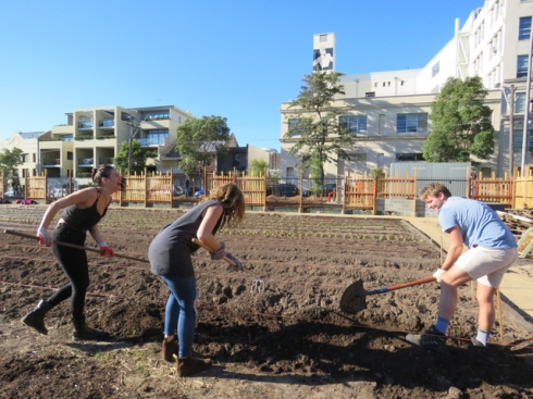 Three enthusiastic volunteers tilling the soil of the second farm plot.