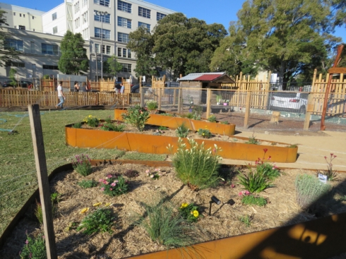 More raised garden beds with the Hen House in the background.