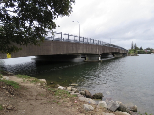 Looking at the Tempe Cooks River Footbridge from Cahill Park